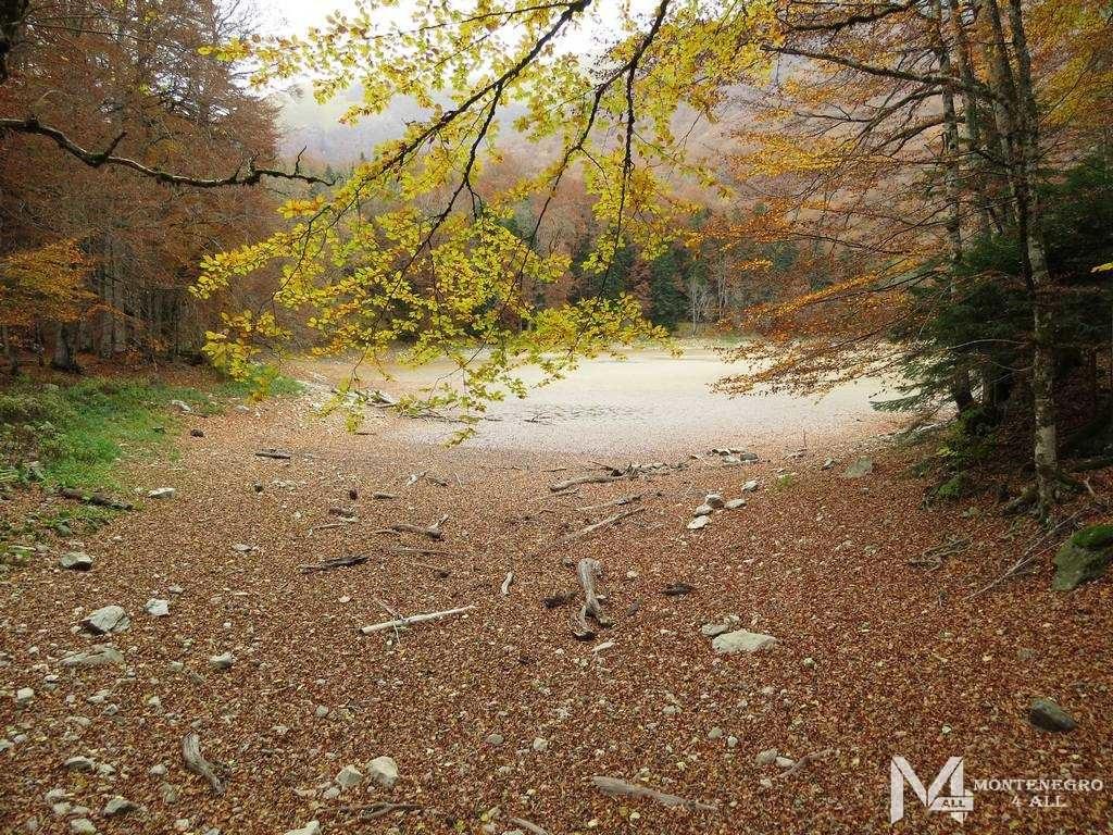 Осенние краски Биоградской горы