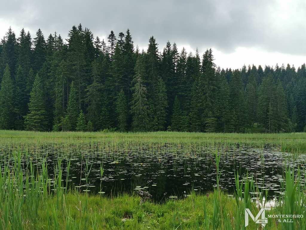 Барное озеро