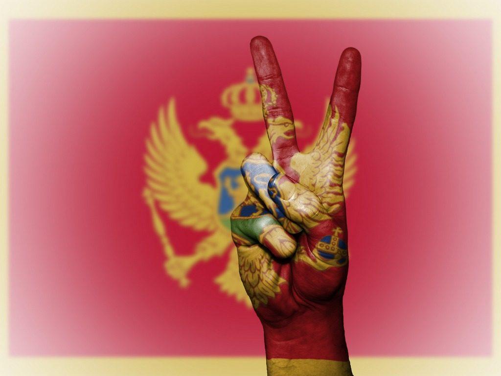 ВНЖ Черногории