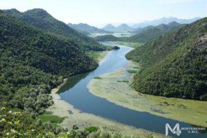 Река Црноевича