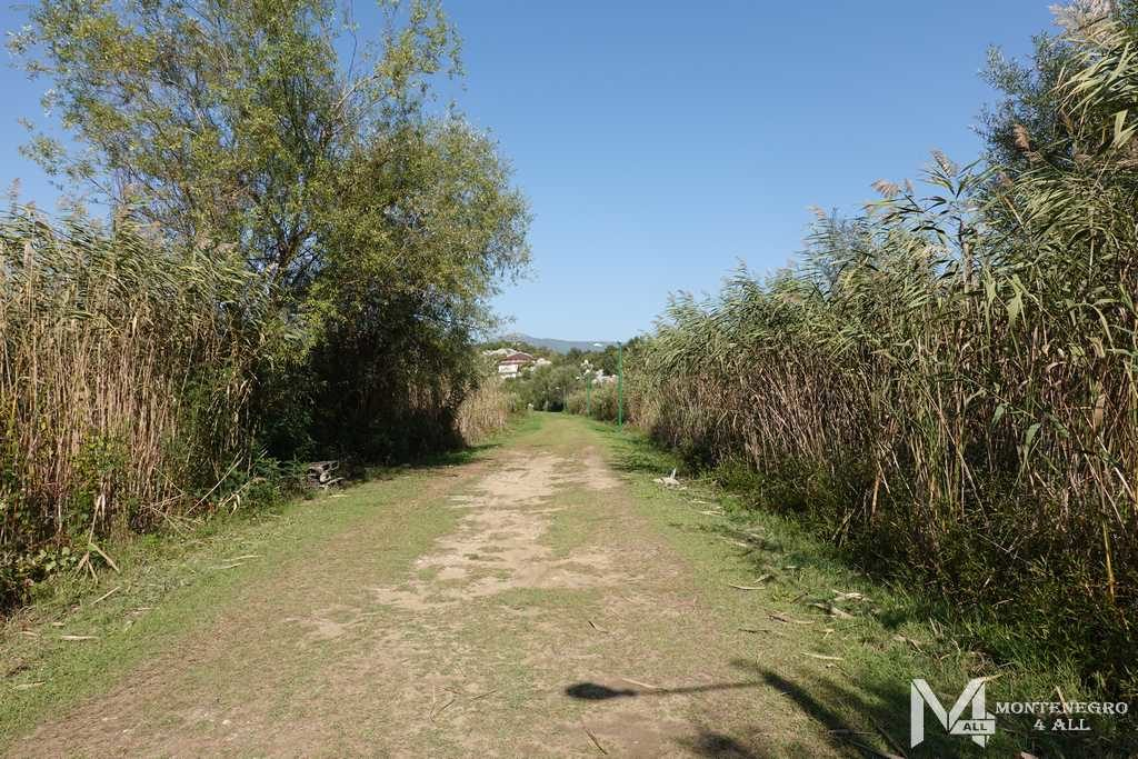 Дорога на Шасское озеро