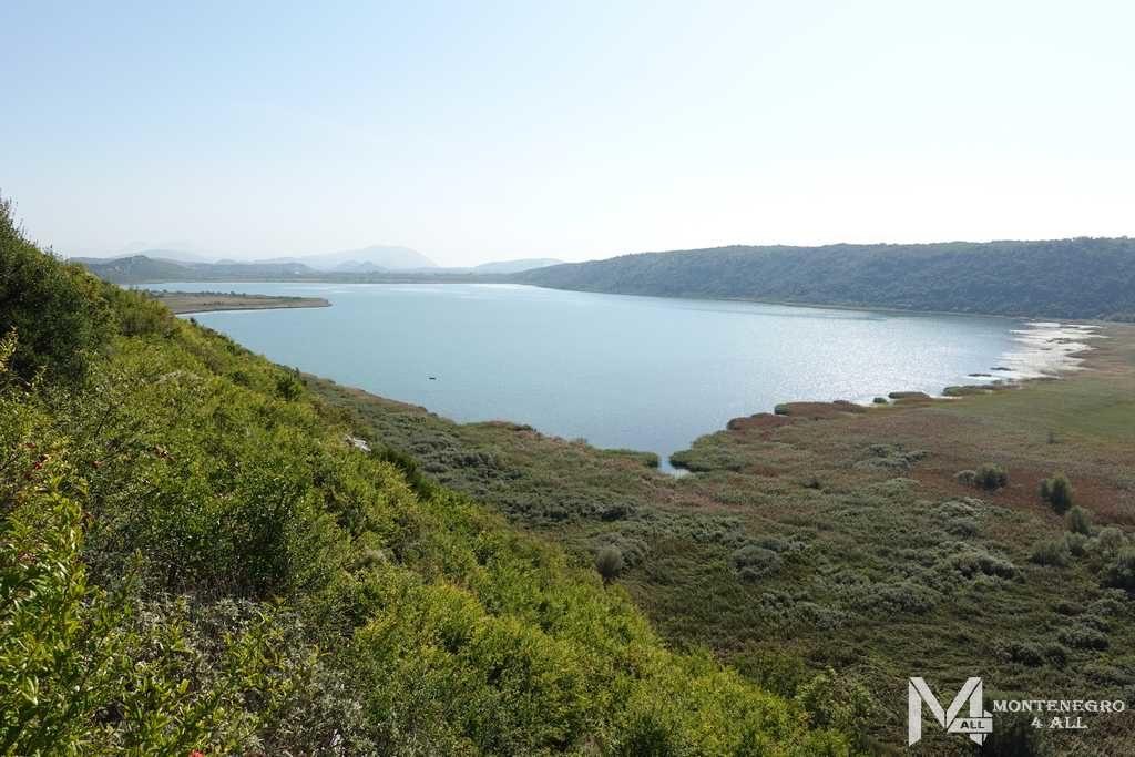 Вид на Шасское озеро