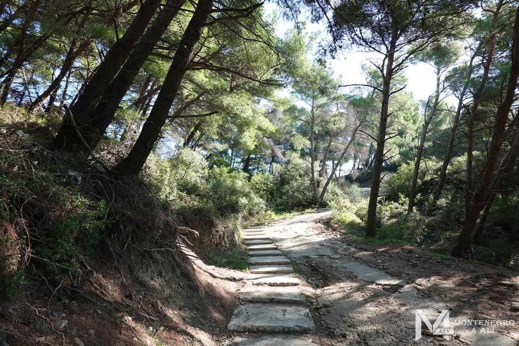 Спуск по лестнице к пляжу