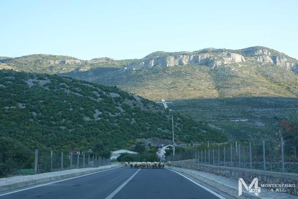 Поездка в Албанию - отличный вариант экскурсии на один день