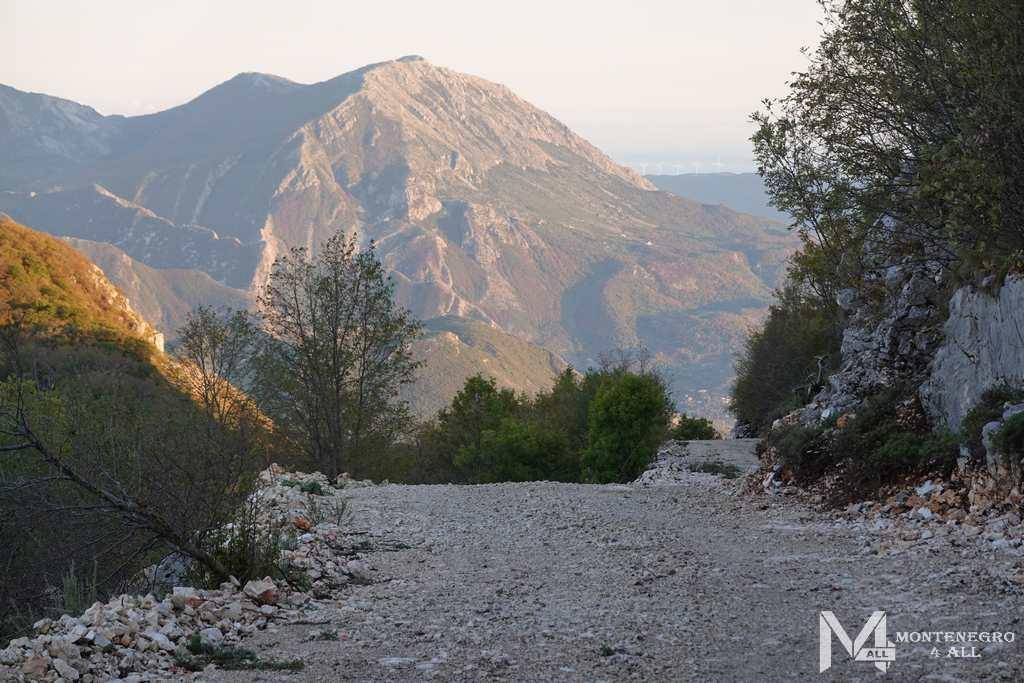 Гора Врсута