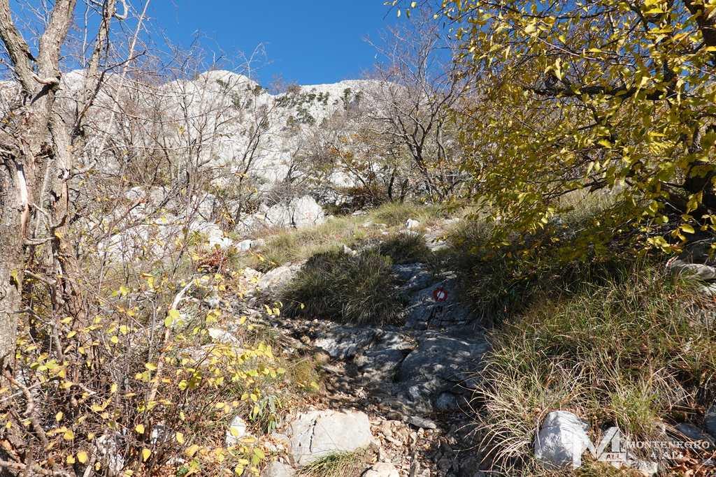 Подъём на гору Румия